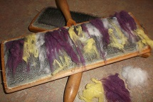 Dyed cotton lint on carders